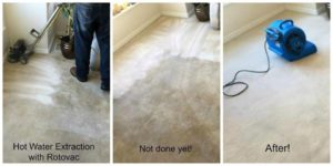carpet cleaning utah, carpet cleaner